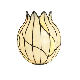 Seperate Glass Lampshade Tiffany Nature Open